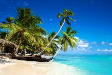 Top destination : République Dominicaine