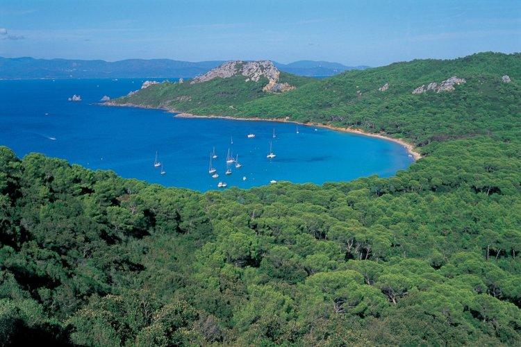 Crique sur l'île de Porquerolles - © HUGO CANABI - ICONOTEC