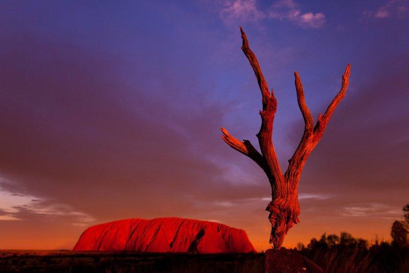 Coucher de soleil sur Uluru.