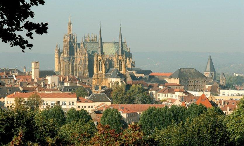 Metz, capitale de la mirabelle