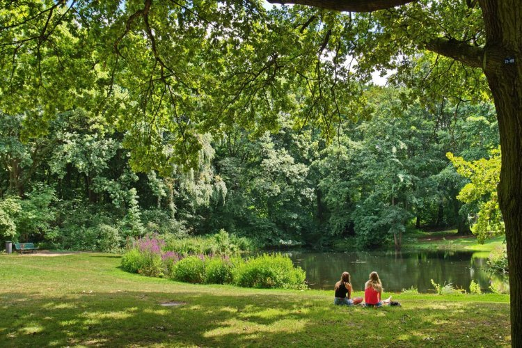 Tiergarten - © Svetlana Turchenick - shutterstock.com