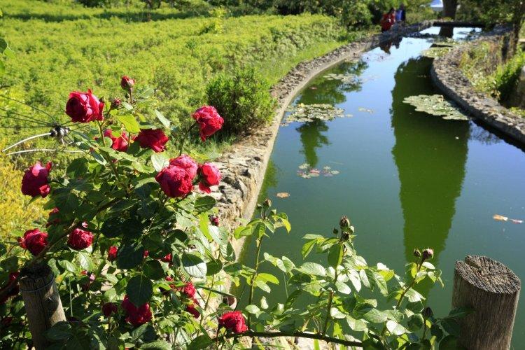Jardin du MIP à Mouans-Sartoux - © CRT Côte d'Azur - Camille MOIRENC