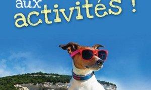 En Avril, priorité aux activités à Bonifacio et dans le Sud-Corse
