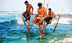 Pêcheurs traditionnels sur échasses.