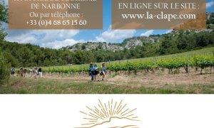 Les Sentiers Gourmands en Clape Vigneronne 2017