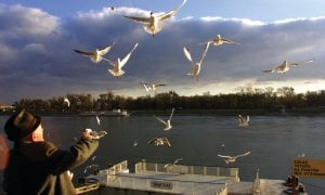 Le long du Danube.