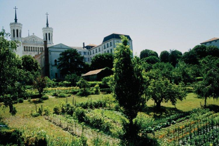 La basilique de Fourvière - © VINCENT FORMICA