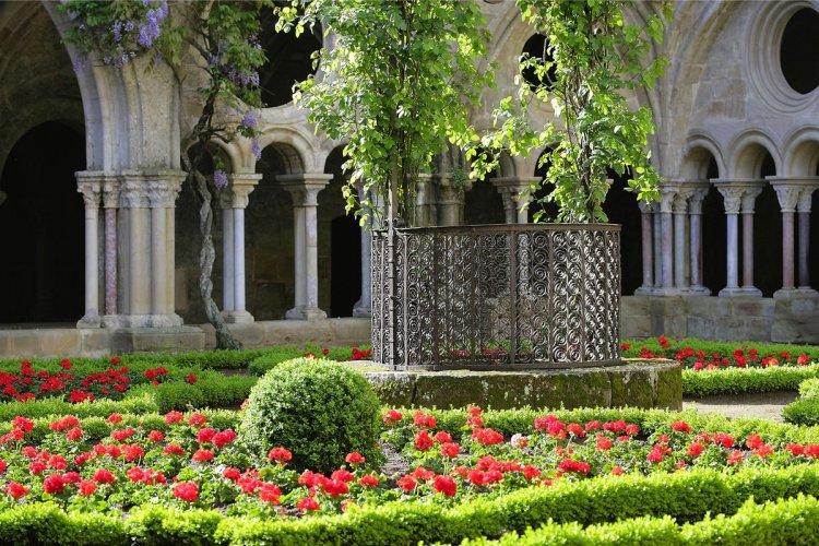 Cloître Abbaye de Fontfroide - © Abbaye de Fonfroide