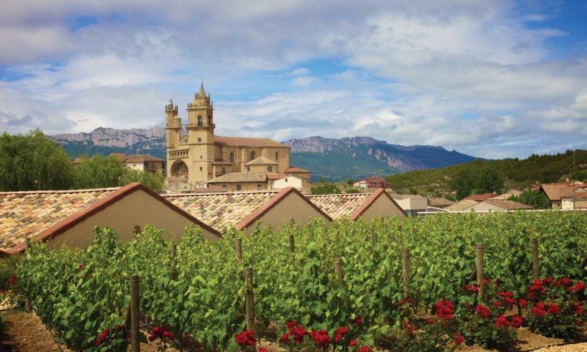 Vignobles de la Rioja.