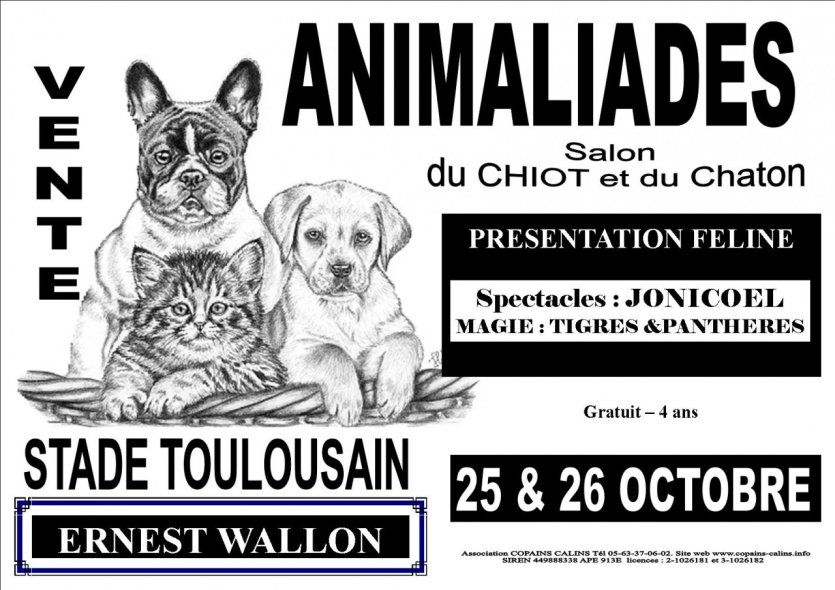 Animaliades salon animaux stade e wallon toulouse haute garonne - Salon des animaux toulouse ...