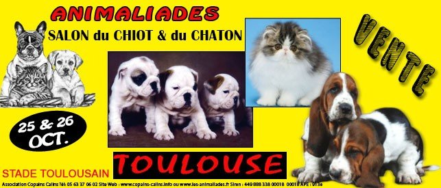 Animaliades salon animaux stade e wallon toulouse magazine haute garonne - Salon des animaux toulouse ...