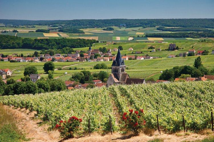 Les vignobles et les villages champenois - © Sylvain SONNET