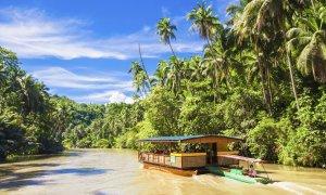 Rivière Bohol - Philippines