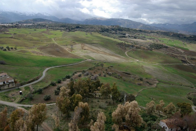Vue sur le parc naturel de la Sierra de las Nieves.