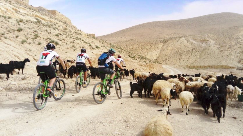 Sur le Jordan Bike Trail entre Pétra et Wadi Rum