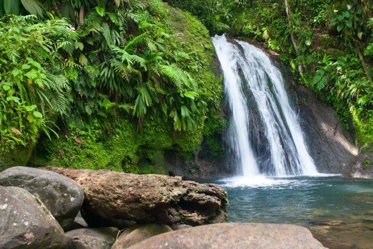 Guadeloupe - Cascade aux Ecrevisses - © Radomir Rezny