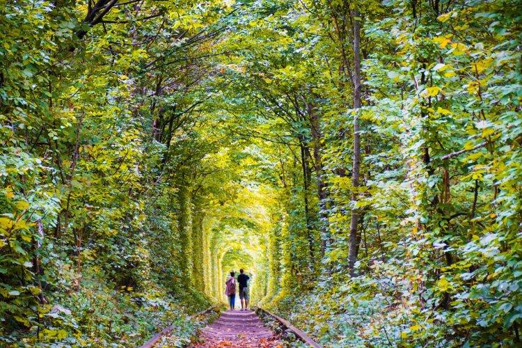 Klevan, le tunnel de l'amour - © Nataliia Trytenichenko