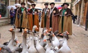 Sarlat Fest'oie fête l'oie comme il se doit !- © Fest'oie