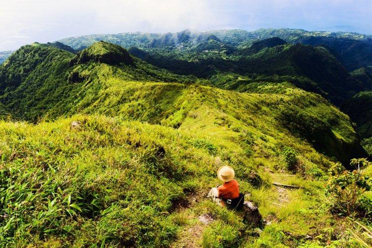 Randonnée dans la montagne Pelée - © Stevegeer