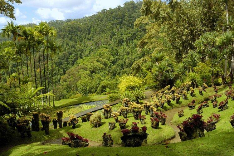 Le jardin de Batala - © Production PERIG - Fotolia