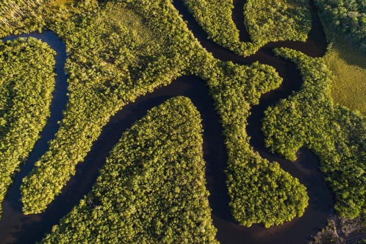 La forêt amazonienne - © Filipe Frazao - shutterstock.com