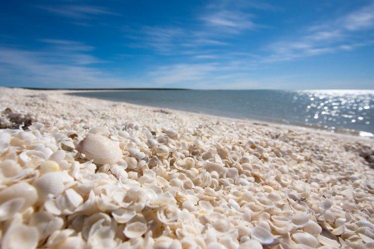Shell Beach, Australie - © Anetta Waberska - Shutterstock.com