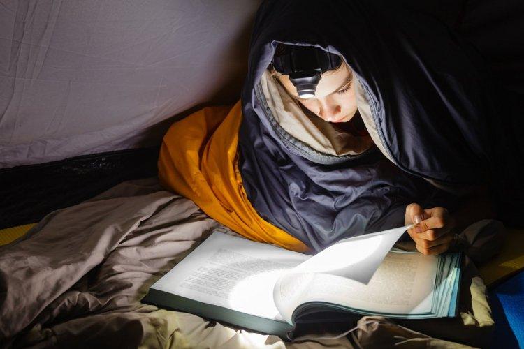 Lampe de poche - © Dmitry Naumov - Shutterstock.com