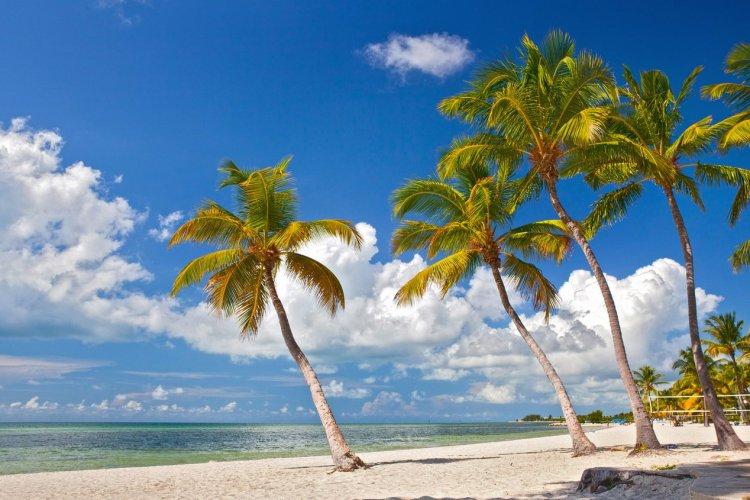 Plage sur Key West, Floride - © Foto Mak