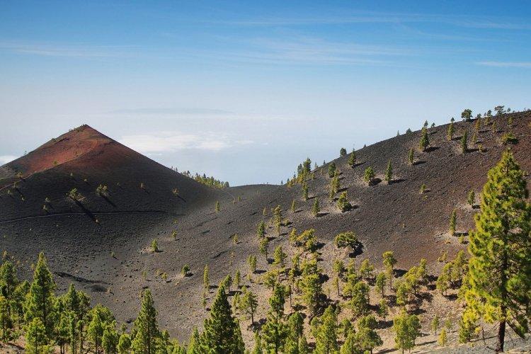Volcan de l'île de Palma - © Marisa Estivill - Shutterstock.com