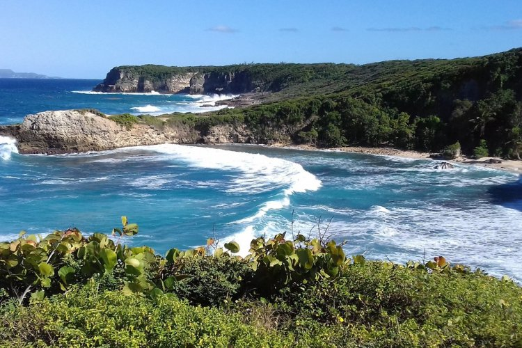 Le Moule, Guadeloupe - © Lacroix Christine - Shutterstock.com