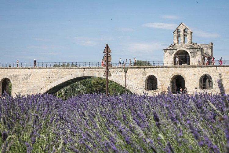 Le pont Saint-Bénezet - © Empreinte d'Ailleurs