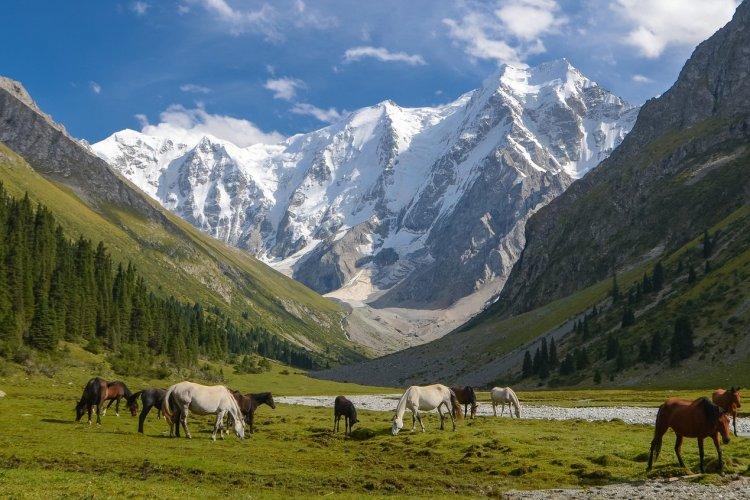Les montagnes de Tian Shan, Kirghizistan - © n. bird - stock.adobe.com
