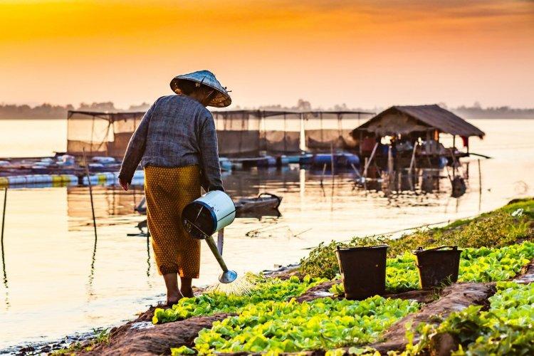Sur les rives du Mékong, Laos - © Miew S - Shutterstock.com