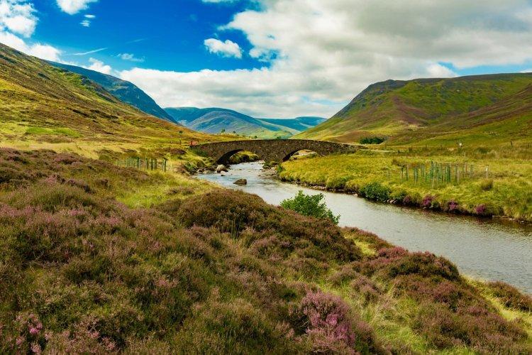 Le parc national de Cairngorms - © Diego Mariottini - Shutterstock.com