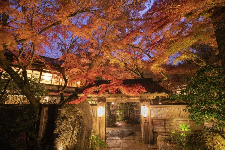 L'automne à Fukuokan - © Japan Travel Planner
