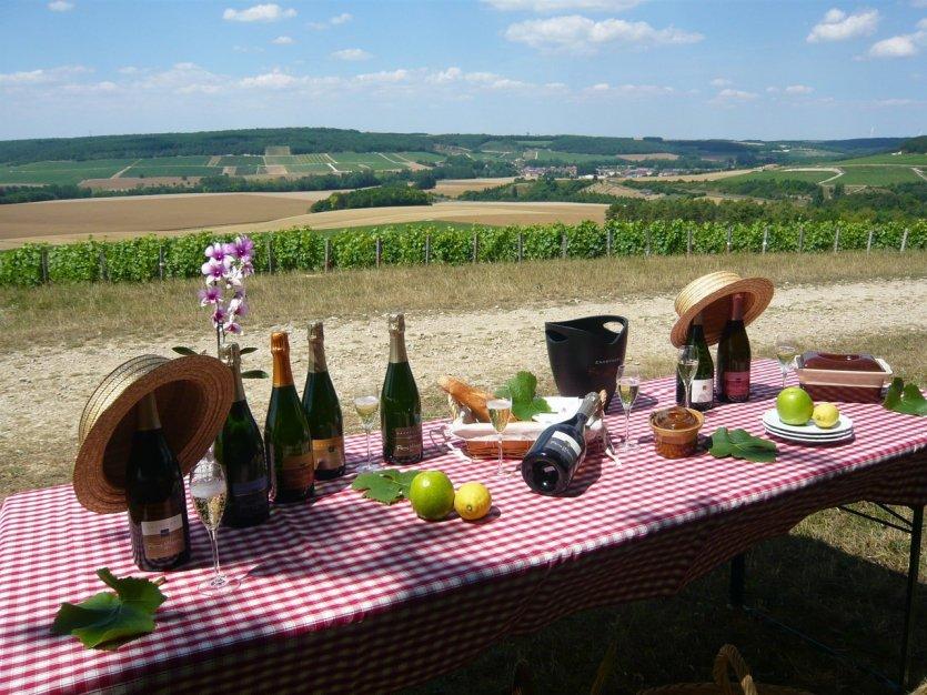 Pique-nique dans les vignes - © Champagne Massin