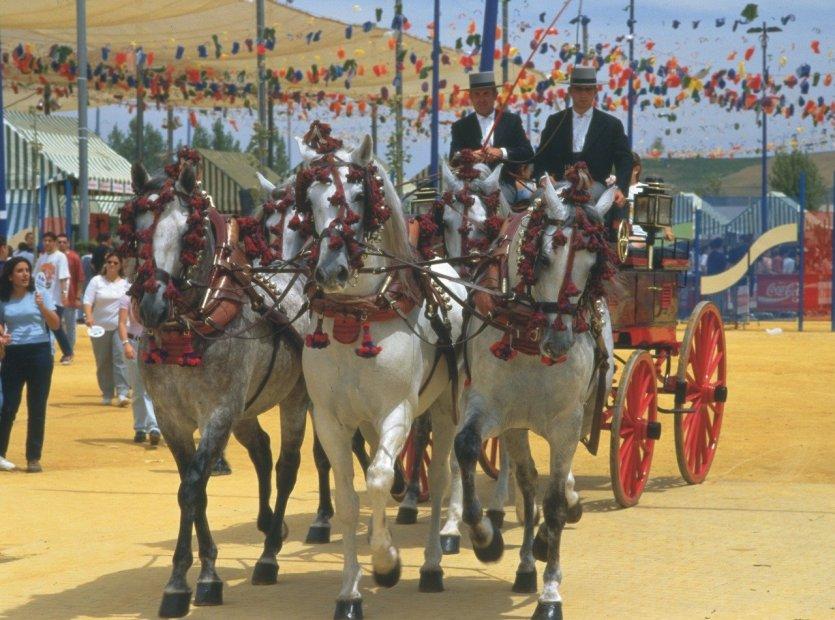 Feria de Cordoue - © DR