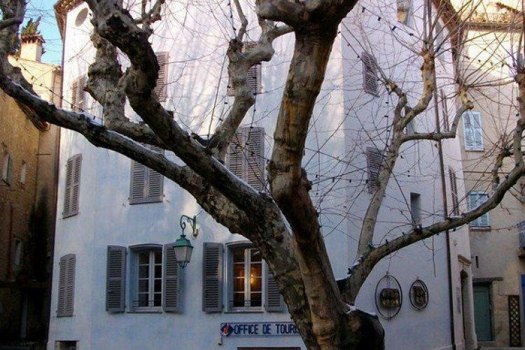 La Maison Waldberg, Donation Ernst/Tanning et Appenzeller à Seillans - Pays de Fayence - © Maison Waldberg