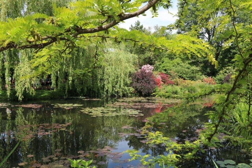 Jardin de Claude Monet à Giverny - © Séverine Frères
