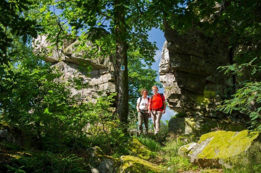 Avec 9,1 kilomètres et seulement 300 mètres d'altitude, la boucle de rêve du parc national de la forteresse de Kirschweiler peut être parcourue confortablement en trois bonnes heures.  Avec 9,1 kilomètres et seulement 300 mètres d'altitude, la boucle de rêve du parc national de la forteresse de Kirschweiler peut être parcourue confortablement en trois bonnes heures. Il est recommandé de porter de bonnes chaussures car plus de la moitié du sentier passe par des chemins nouvellement créés et traverse le dépôt de rochers du Ringskopf. Le sentier est marqué