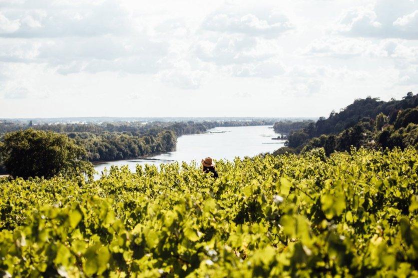 La Loire. - © VNF-AtoutFrance_Amélie_Blondiaux
