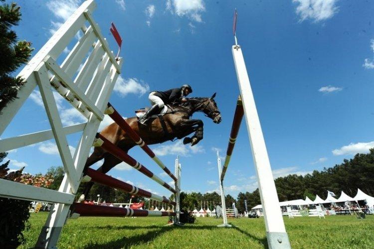 - © Comité Equestre de Saumur