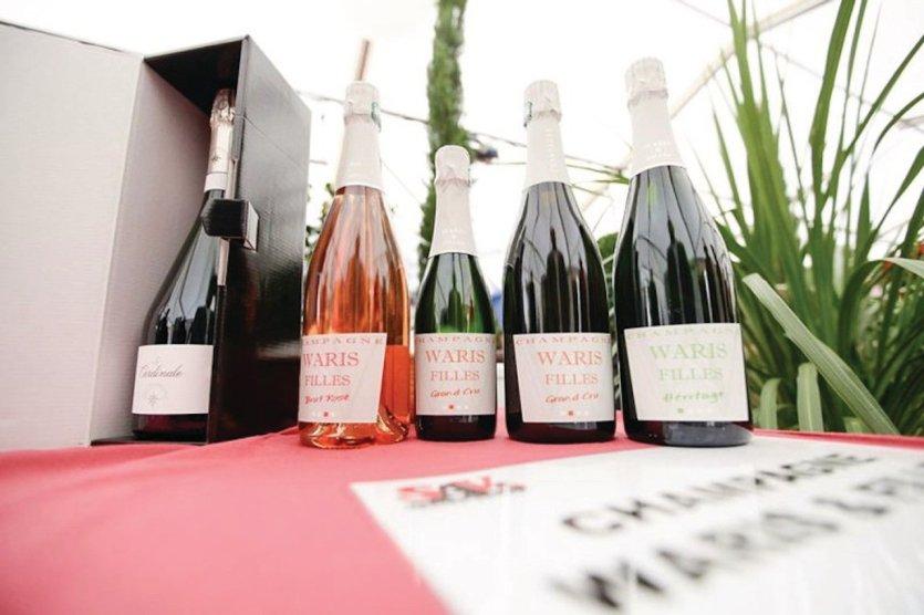 Salon du vin vinifestif ros la grande motte la for Salon du vin nancy