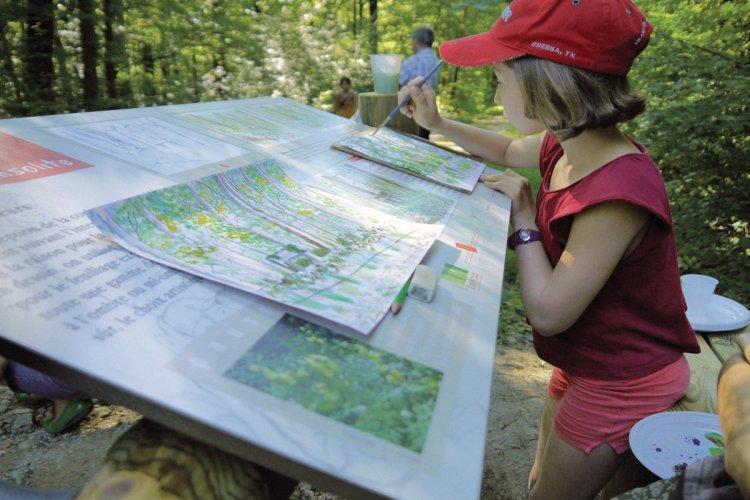 balades artistiques en forêt de seillons - © GT OTBBA