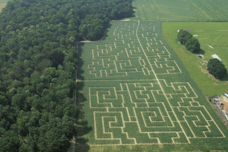 Labyrinthe - © OT Bourg-en-Bresse