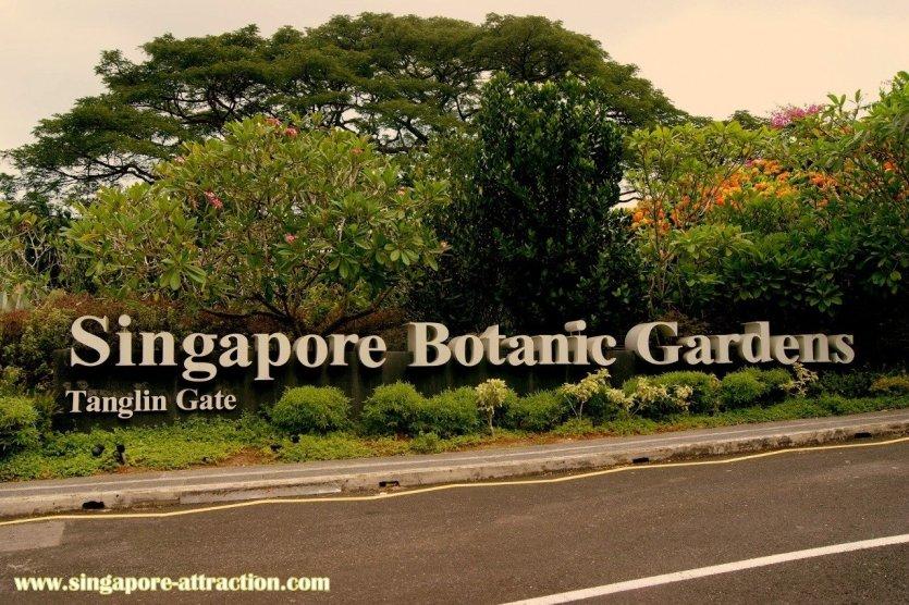 Les jardins botaniques de Singapour - © www.singapour-attraction.com
