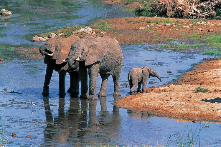 - © Tanzania Tourist Board