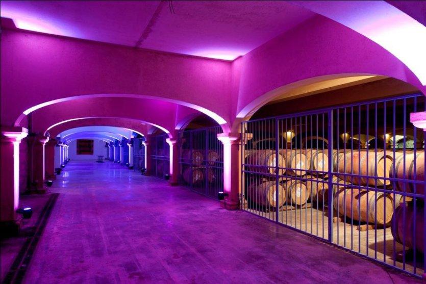 Caves du château l'Hospitalet. - © D.R.