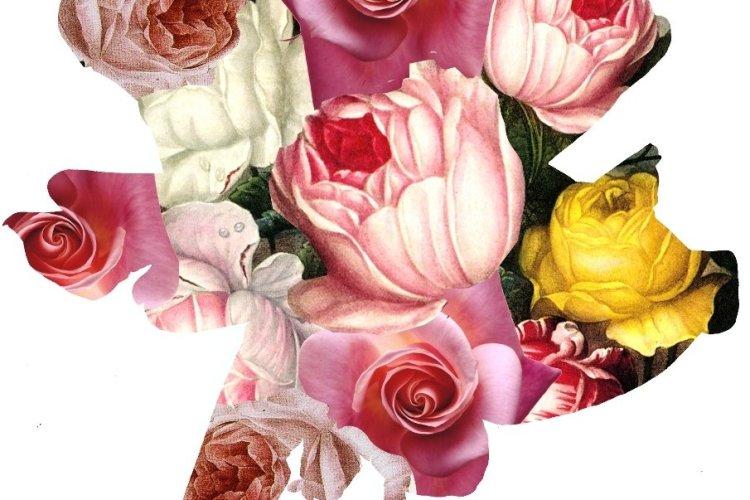- © Un livre une rose 2014