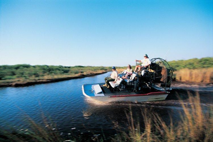 Dans les marais de l'Everglades National Park. - © John Frechet - Iconotec